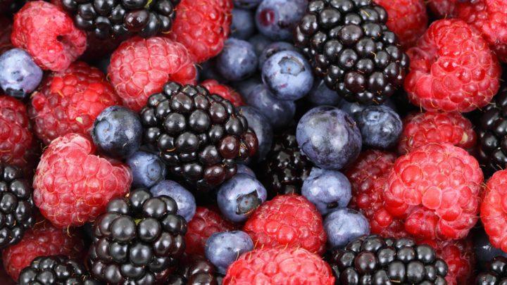 Calcul Alimentation naturelle barf 5 avec fruits
